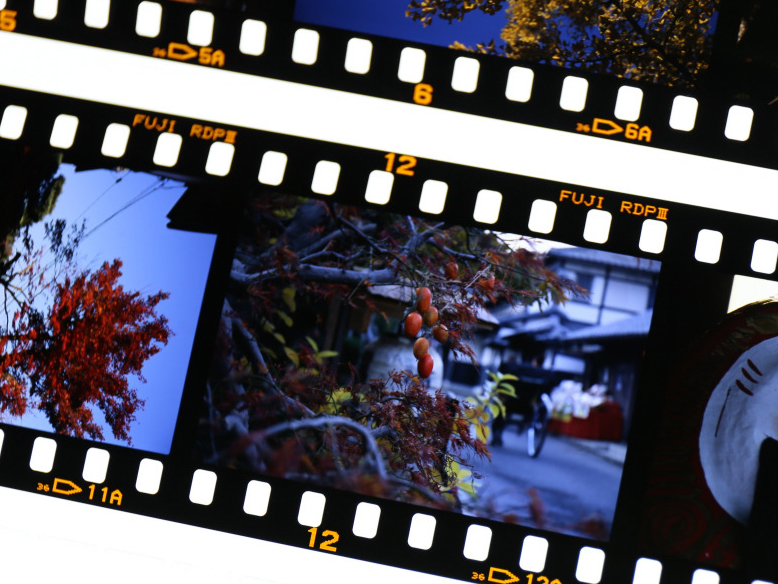 日常の何気ない風景を目線を変えて撮る「卓上」公式カメラ隊