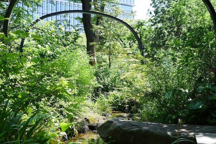 ガーデンテラス紀尾井町にあるビオトープ(生態環境)
