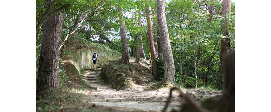 今回参加した「奥松島グループライド&ハイキング」コースには、奥松島のハイキングコースを登っていくところも