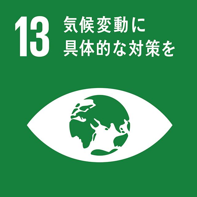 13.気候変動に具体的な対策を ロゴ