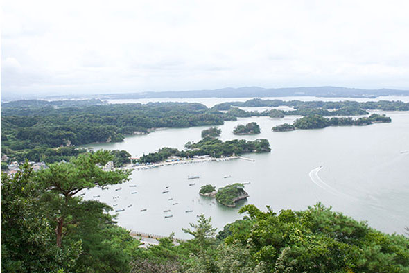 松島を一望できる展望台に到着!