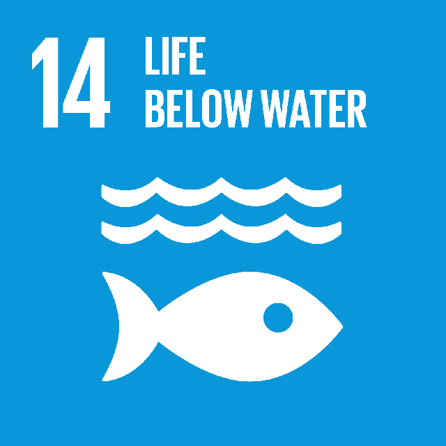 The SDGs icons of LIFE BELOW WATER