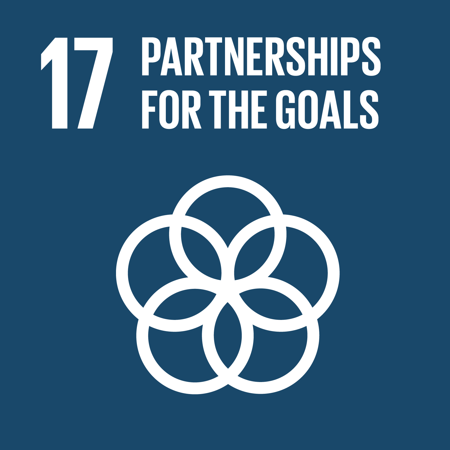 sdg icon #17 PARTNERSHIPS FOR THE GOALS