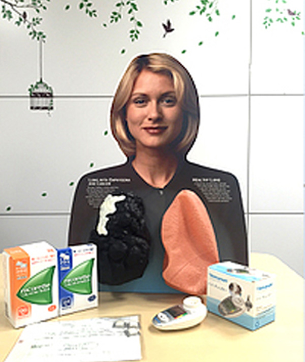 セミナーや禁煙指導のときに活用している肺モデル