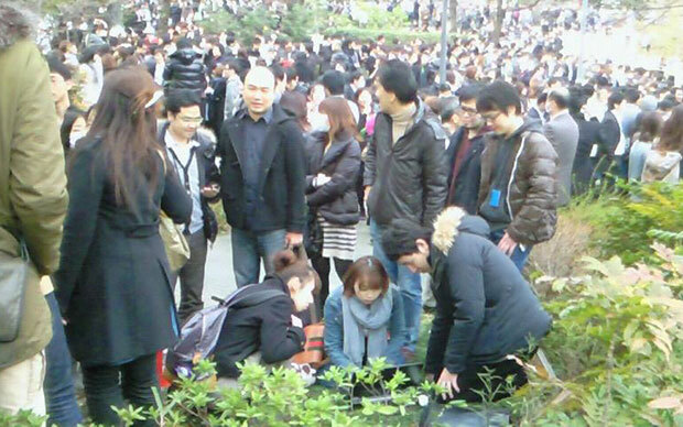 Responding to a Yahoo! JAPAN News feed in an evacuated park.