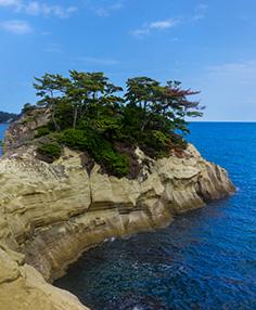 東松島の魅力 写真4