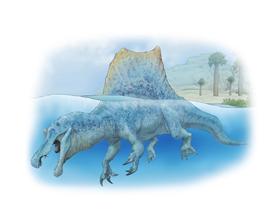 新しい化石の発見「スピノサウルス」