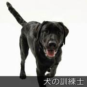 犬の訓練士