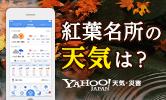 紅葉名所の天気は? Yahoo! JAPAN天気・詐害