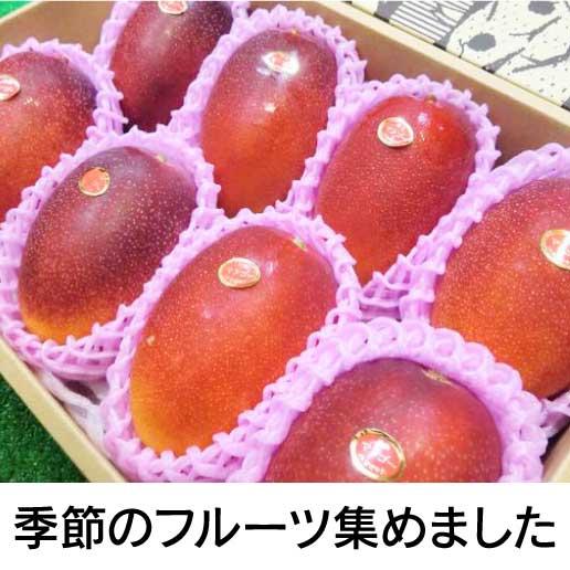 季節のフルーツ集めました