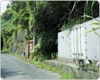 三重県熊野市の山林