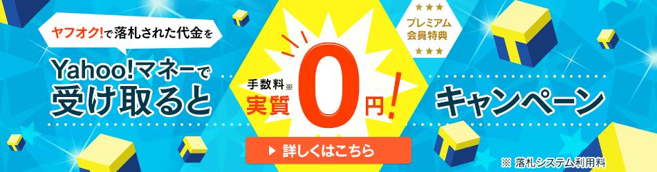 Yahoo!マネーで受け取ると実質0円キャンペーン