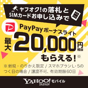 落札価格2万円まで実質無料に!
