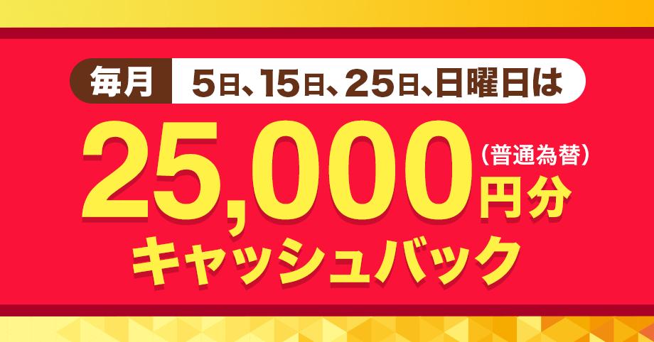 毎月5日、15日、25日、日曜日は25,000円分キャッシュバック(普通為替)