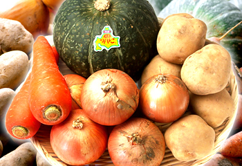 北の大地の恵み! 北海道産 秋野菜セット