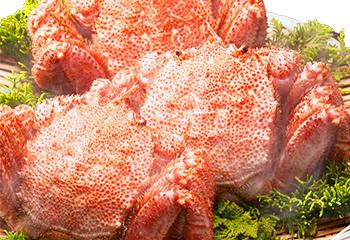 浜茹で「毛蟹」、大570g×2尾セット