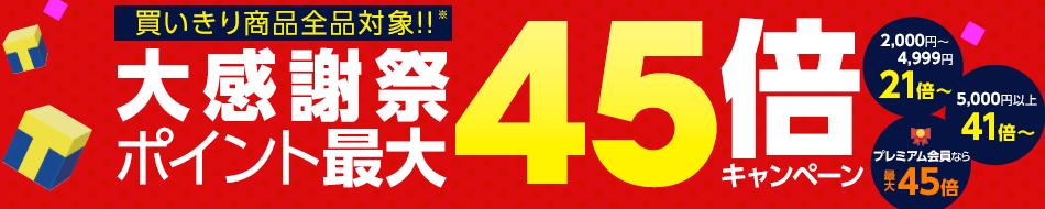 大感謝祭ポイント最大45倍キャンペーン