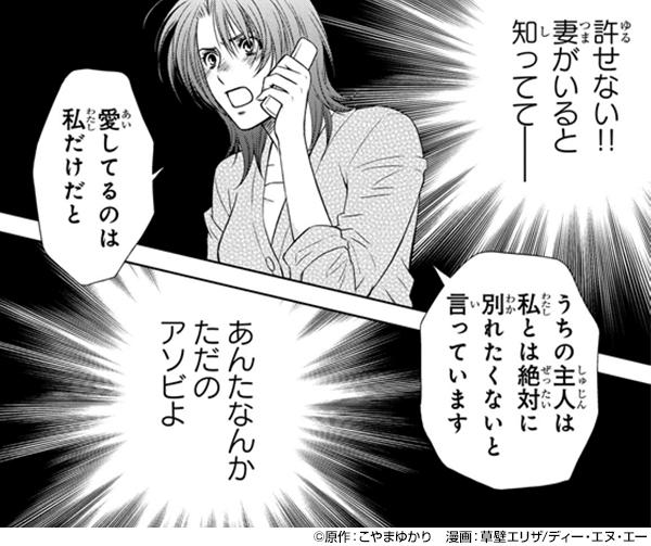『ホリデイラブ ~夫婦間恋愛~』コマ