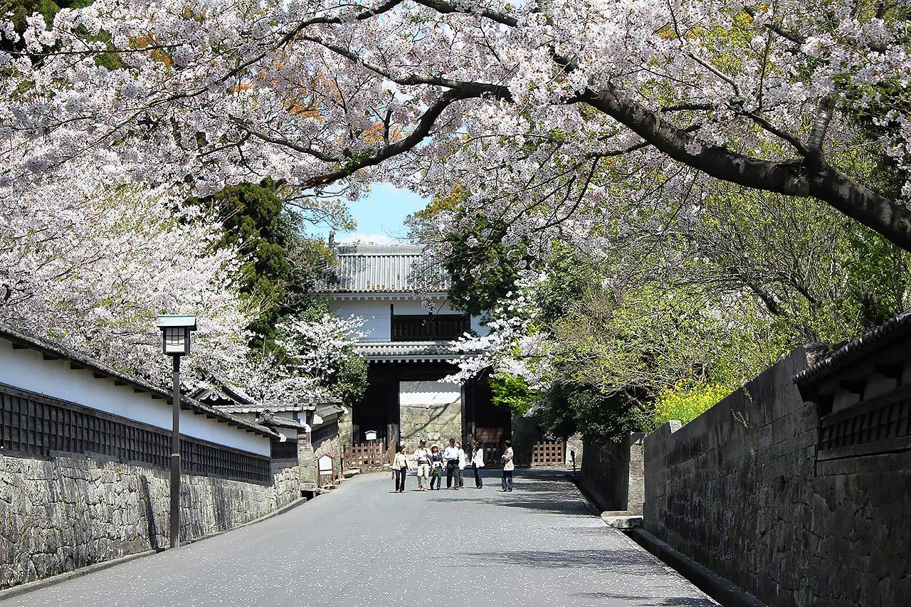 飫肥城の大手門(日南市提供)