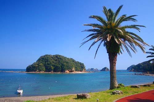 日南市は温暖で海水浴場としても人気
