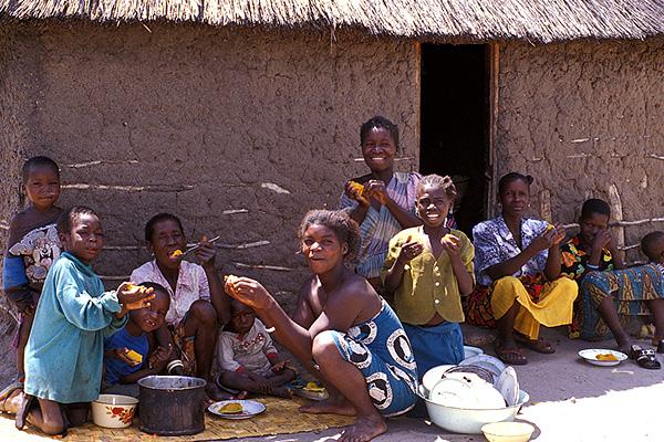 日本が学べること <br>「アフリカ的幸せ」とは?