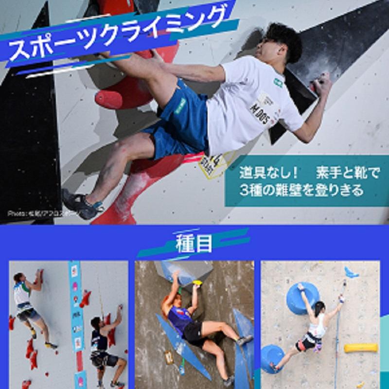 【図解】東京2020オリンピックの新競技・スポーツクライミングのルールと見どころ