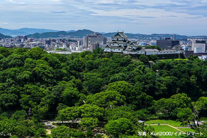和歌山城の天守閣からは和歌山市を一望することができる