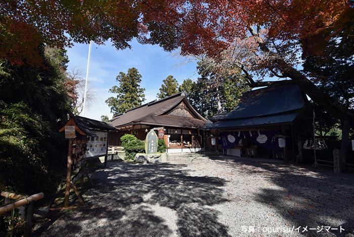 吉野山にある吉水神社も哲夫さんお気に入りの一社