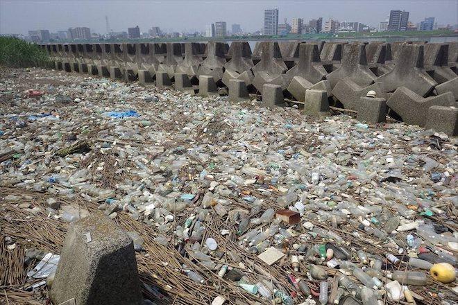 荒川は海洋ごみ問題の最前線