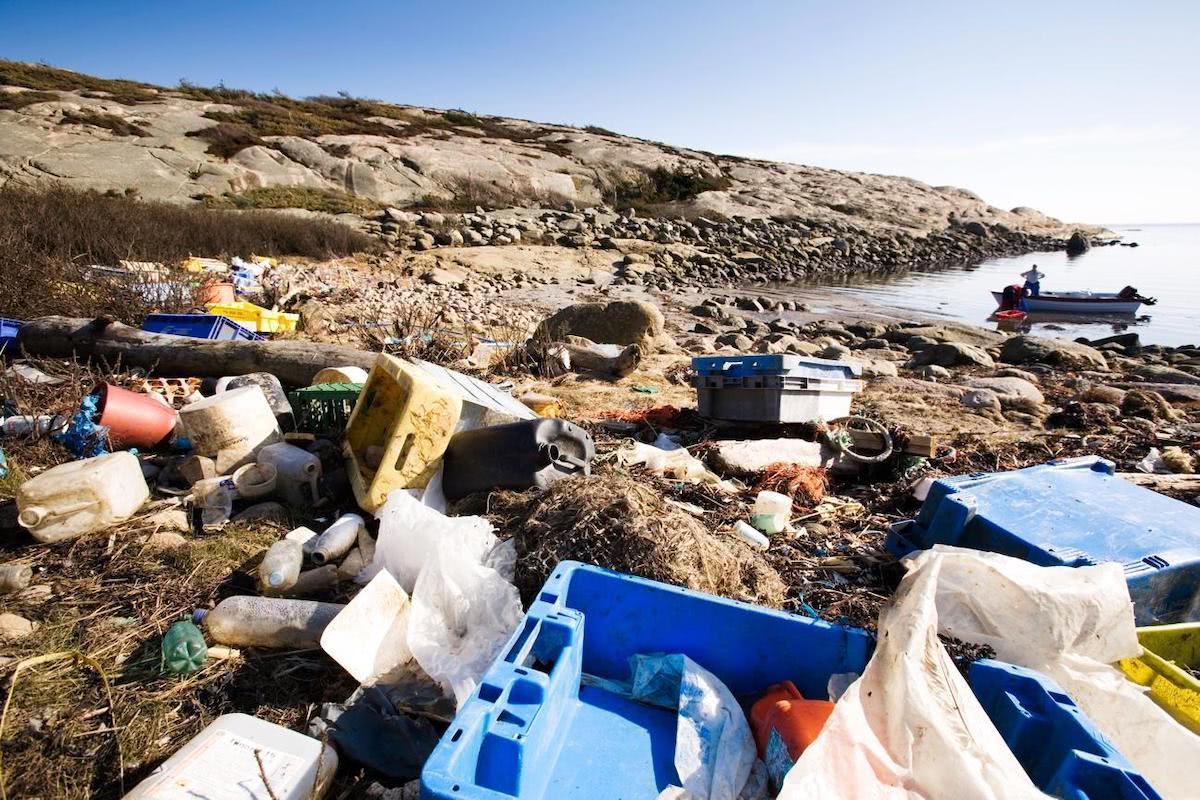 海岸に漂着したゴミ