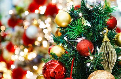 クリスマス料理にオマールエビはいかがですか?
