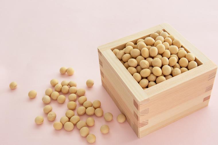 マスに入った大豆