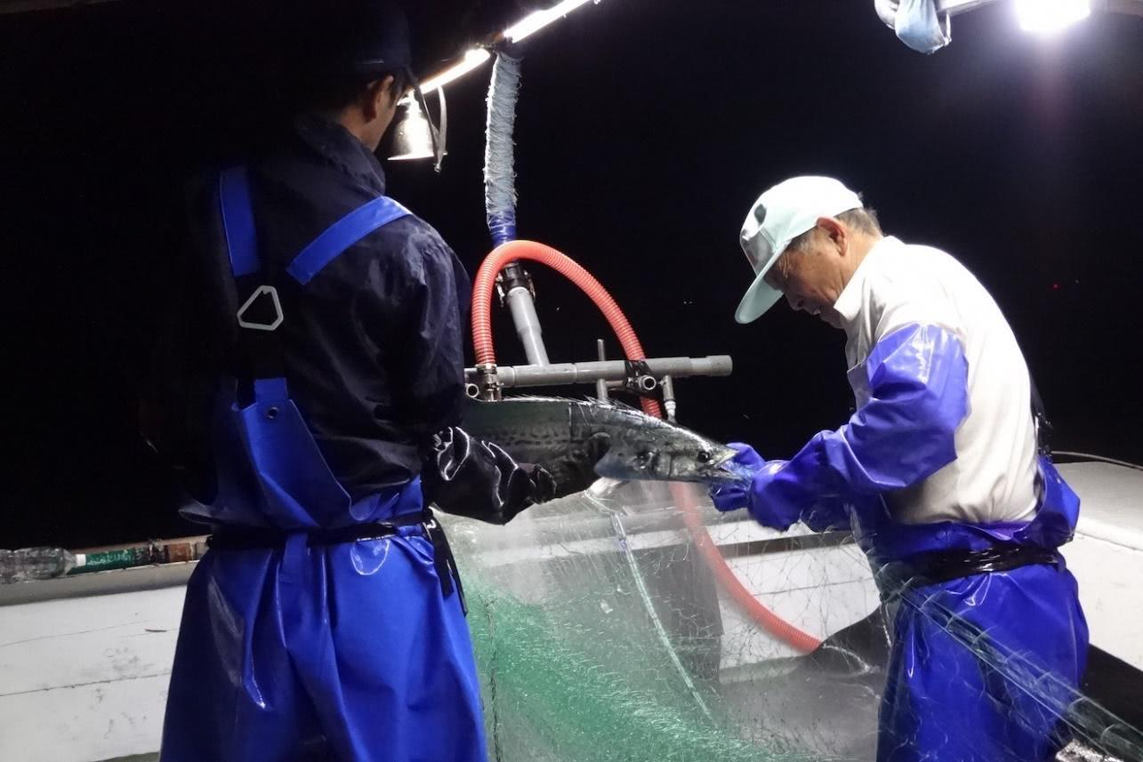 【第1回】獲りすぎなければ魚は増える。北海道から沖縄まで、実を結びだした努力(提供:EDF)