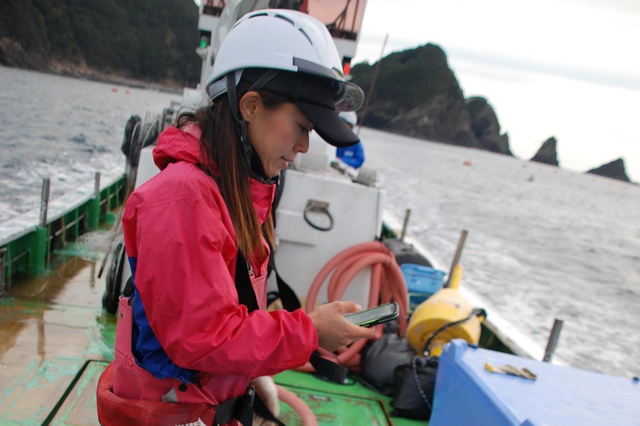 スマートフォンで魚種を記録する女性漁師