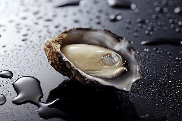 清らかな海の美しい牡蠣 、くにさきオイスター|美しい日本が生まれる風景