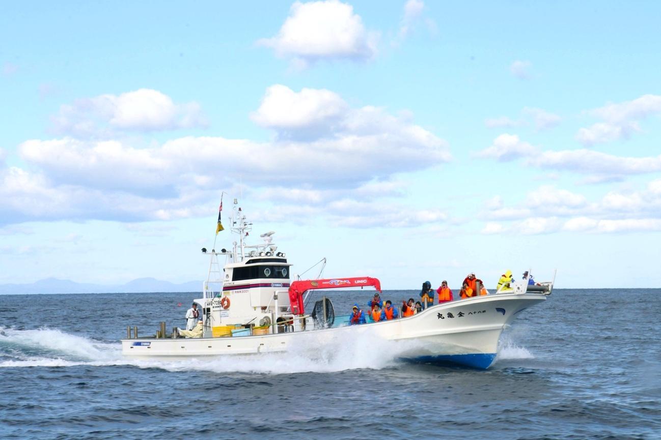バタンバタンと荒波に乗る漁船