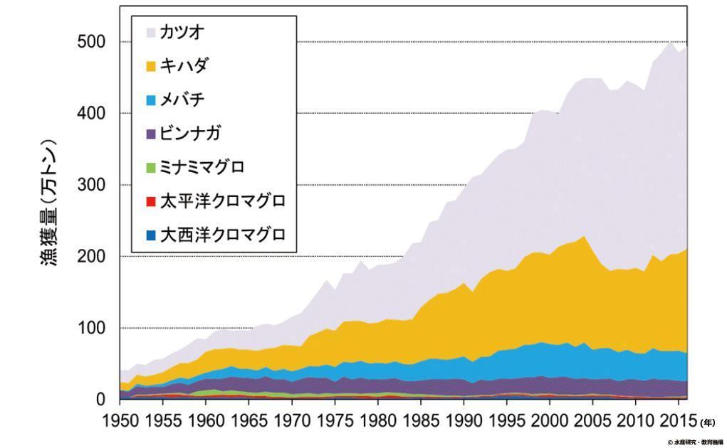世界の主要マグロ類(カツオを含む)の魚種別漁獲量の推移