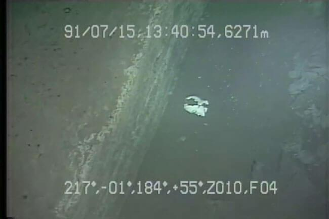 (C)JAMSTEC マネキン / 日本海溝 宮古東方東部 潜航:1991/07/15 撮影:有人潜水調査船「しんかい6500」
