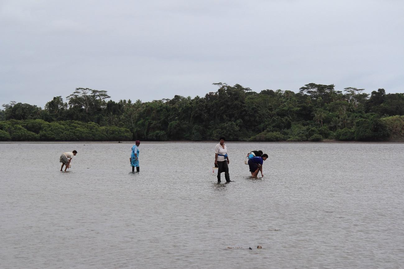 クミ村沿岸で貝拾いをする女性
