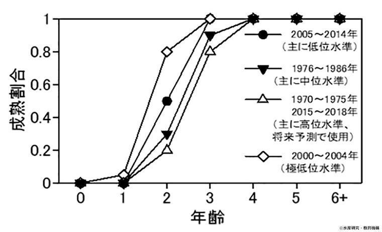マサバ太平洋系群ー成熟割合のグラフ