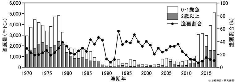 マサバ 太平洋系群の資源量推移のグラフ