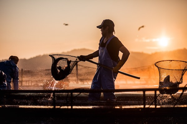 水産業は何色だ。もしモノクロームに見えるなら、見せたい世界がある