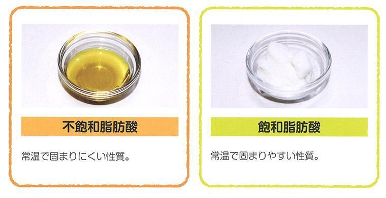 不飽和脂肪酸と飽和脂肪酸