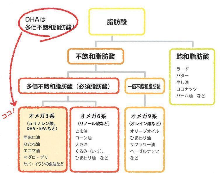 DHAは多価不飽和脂肪酸