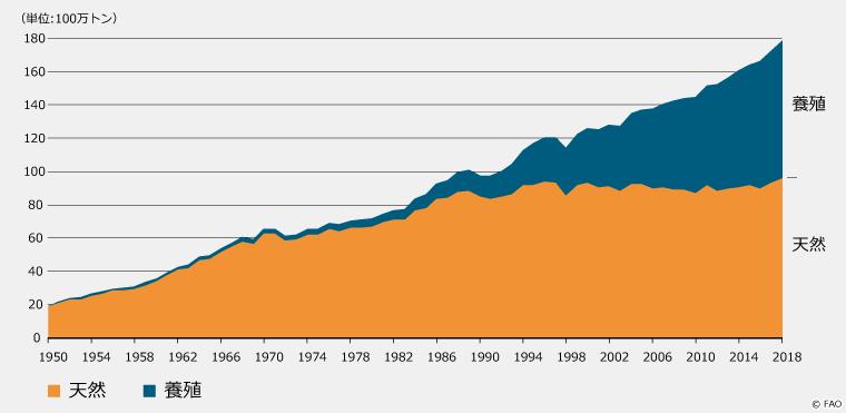 天然魚と養殖魚の割合のグラフ。養殖魚は年々増えてきている。