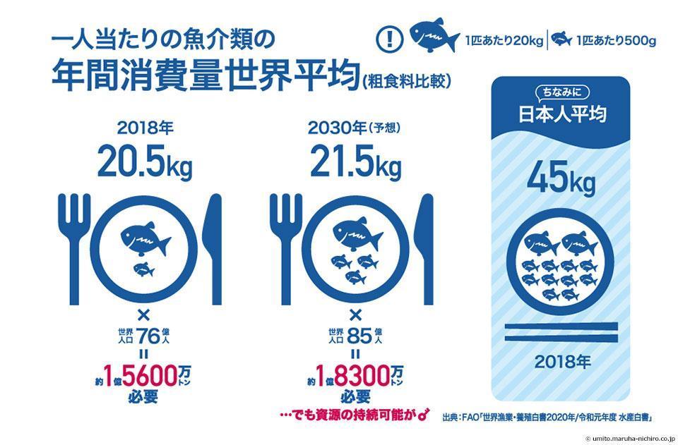 >一人当たりの魚介類の年間消費量世界平均