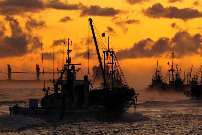 70年ぶりの改正漁業法が施行。水産資源管理はどう変わる?