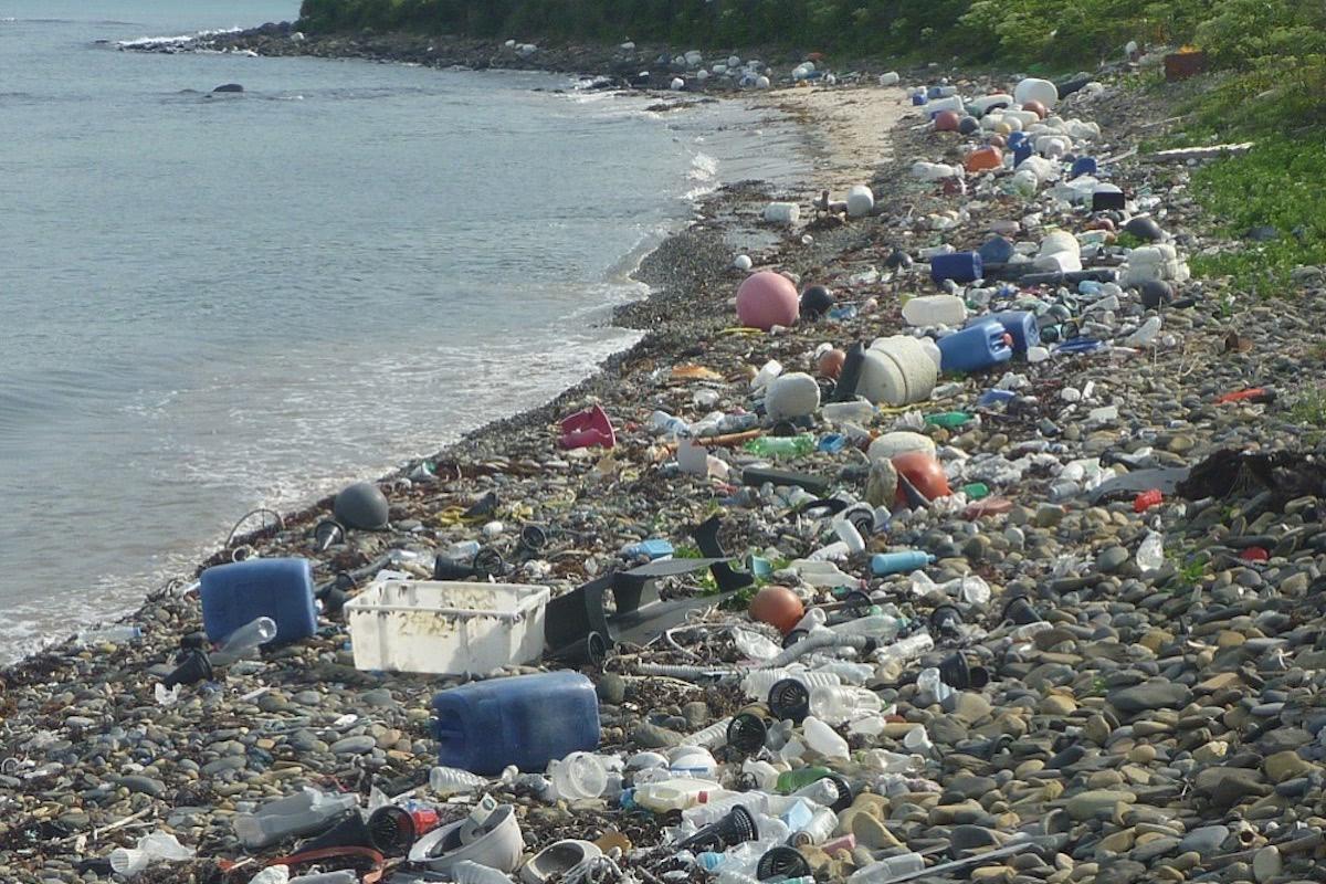 「海洋プラスチックごみ問題」。どうして今? 何が問題なの?