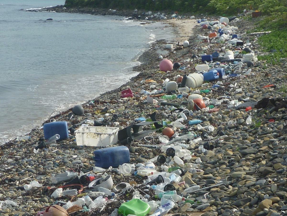 海岸に広がるプラスチックゴミ