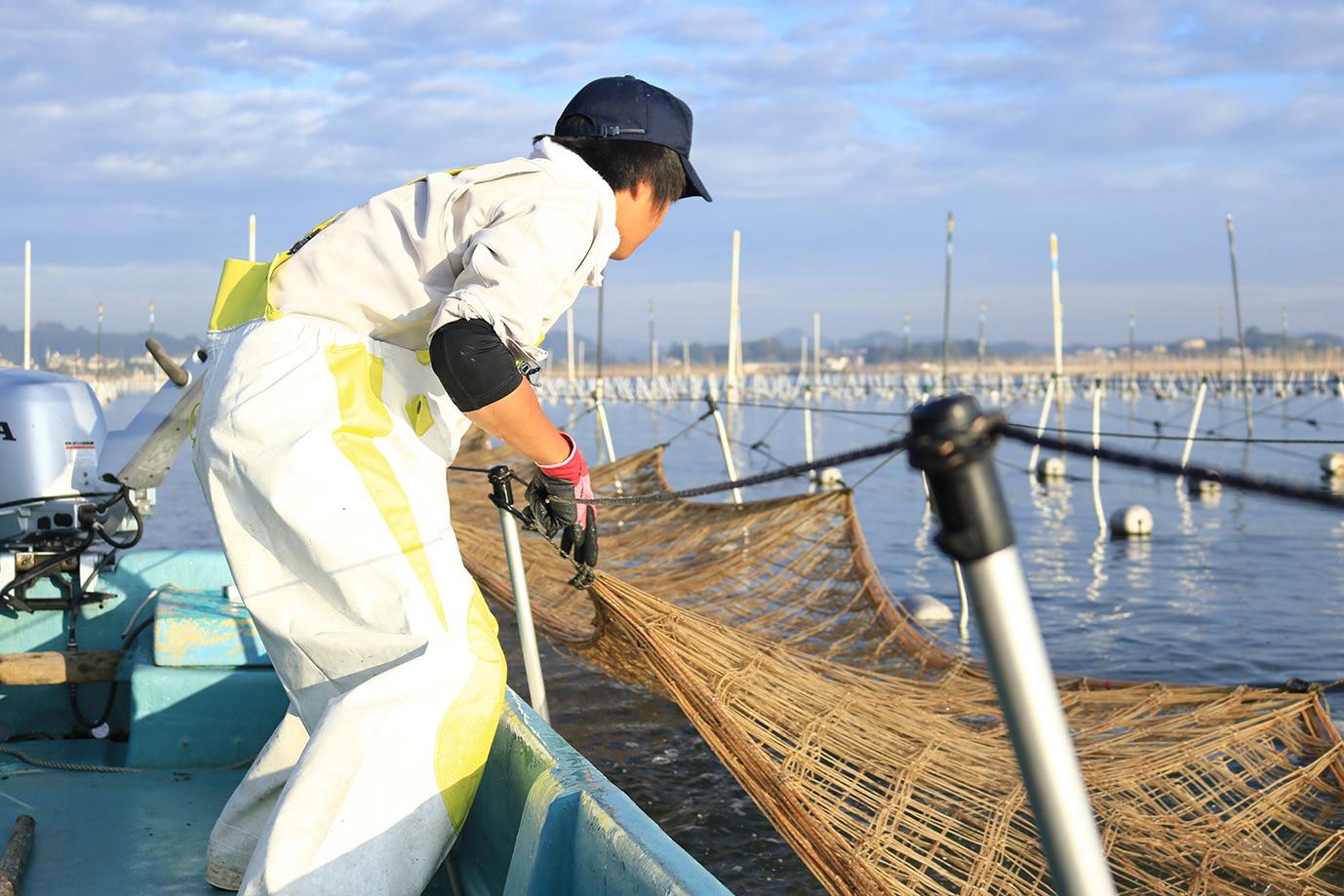 漁場に網を張る様子